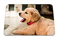 26cmx21cm マウスパッド (ゴールデンレトリバー子犬横たわっている襟) パターンカスタムの マウスパッド