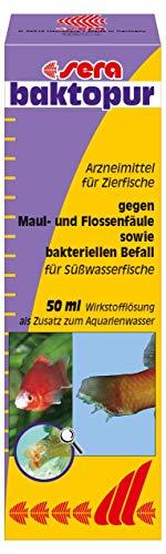 Sera 02550 baktopur - Arzneimittel gegen bakterielle Infektionen bei Zierfischen (z. B. Maul- und Flossenfäule)