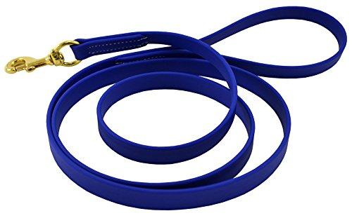 J&J Dog Supplies Biothane Dog Leash, 3/4' Wide by 6' Long, Blue