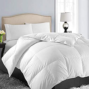 EASELAND King Soft Quilted Down Alternative Summer Cooling Comforter Hotel Collection Reversible Duvet Insert with Corner Ties,Warm Fluffy Hypoallergenic for All Season,White,90 by 102 Inches