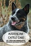 Australian Cattle Care: Tips, Tricks And Training Advice For Raising Australian Cattle Dog: Training A Young Australian Cattle Dog