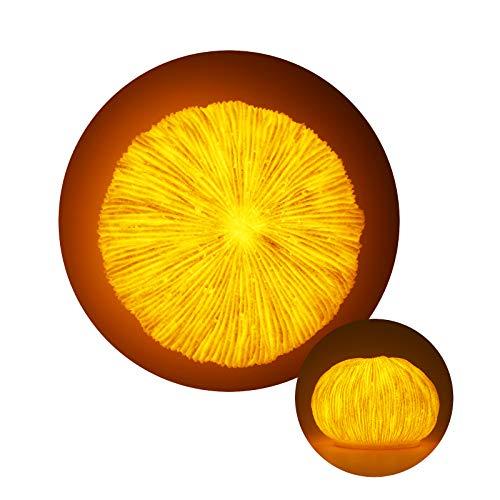 GREENIC Lámpara de mesita de noche de piedra arenisca de coral de, luz de noche LED para decoración del hogar y la playa, luces de noche para dormir, funciona con pilas, blanco cálido
