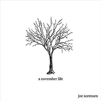 A November Life