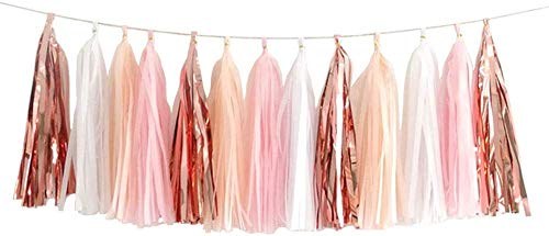 ZooYoo Shiny Tassel Garland Tissue Paper Tassel Banner,Table Decor,DIY Kits for Tassels Party Decoration,Pack of 20- (Rose Gold/Peach Color/Light Pink/White)