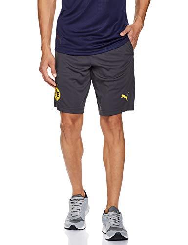PUMA Herren BVB Training Shorts Pockets with Zippers, Asphalt-Cyber Yellow, M