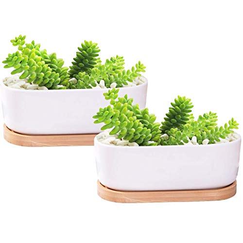 Uooker 2PCS Ceramic Plant Pot & Bamboo Base,Succulent Cactus Herb or Aloe Plant Pot for Home, Office, Table Decorative and Birthday Gifts