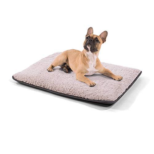 brunolie Finn kleine Hundedecke, geruchsneutral, hygienisch und rutschfest, waschbare Hundematte in Beige, passend für das Auto, Größe S (68 x 54 x 5 cm)