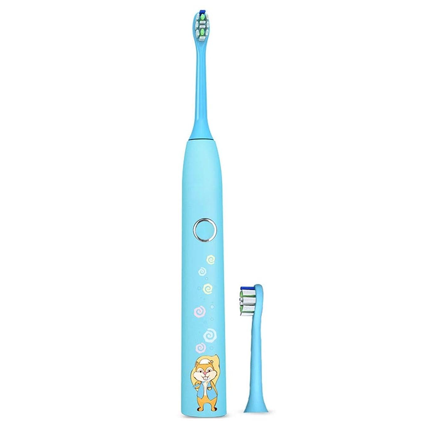 平行指定自己電動歯ブラシ 子供の電動歯ブラシ保護クリーンUSB充電式柔らかい毛の歯ブラシ歯科医は、日常の使用にお勧め 大人と子供向け (色 : 青, サイズ : Free size)