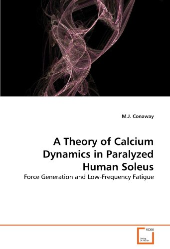 A Theory of Calcium Dynamics in Paralyzed Human Soleus: Force Generation and Low-Frequency Fatigue