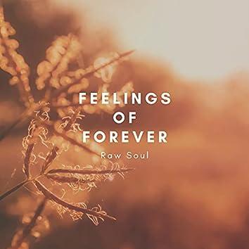 Feelings of Forever