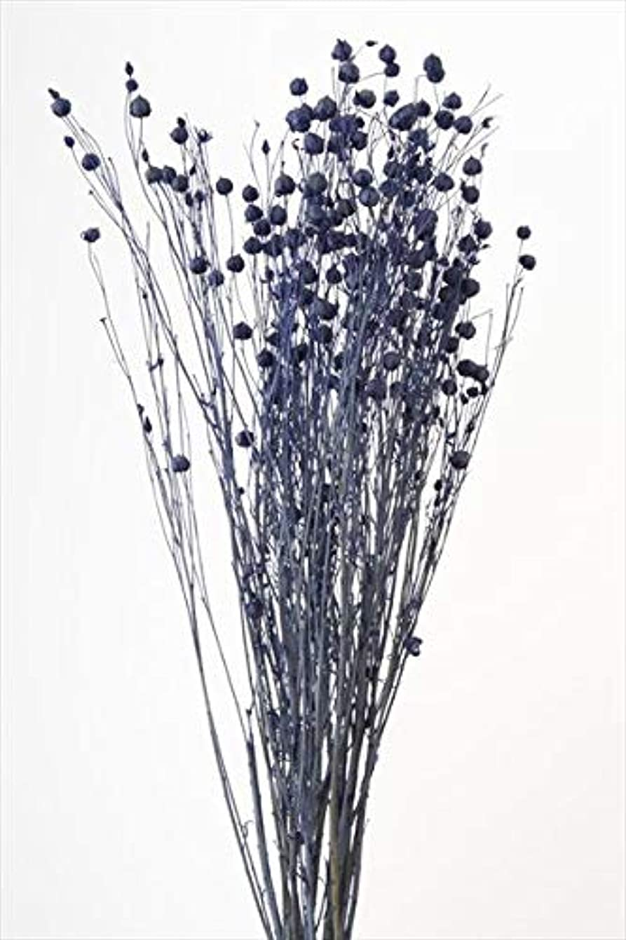 第九アクセント経験的そらプリ hana oil ハーバリウム ドライフラワー 花材 リンフラワー コバルトブルー 小分け