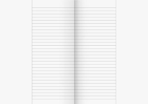 papieto Oberschulheft/Schulheft LINEATUR 25a (Din A4 / 20 Blatt) Menge FREI WÄHLBAR + KLASSENSATZ PREISVORTEIL (10 Hefte)