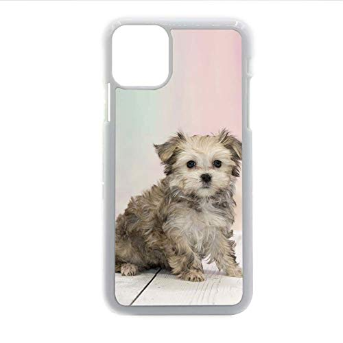 Compatible para Samsung Galaxy S21 Teléfono, Conchas, Plásticos Gracioso Mujer Diseño Teddy Bear Dog