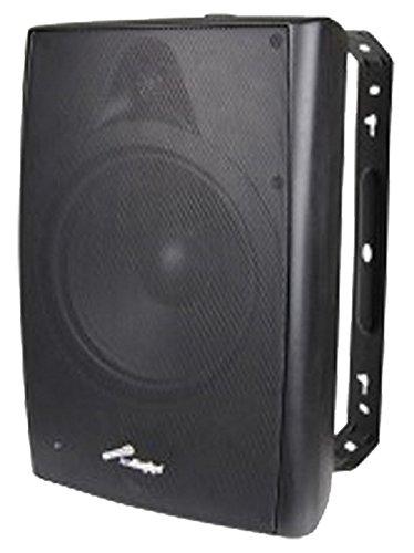 Audiopipe ODP-800BK 8 Inch 160 Watt UV Water Resistant Outdoor Speaker with Wall Mounting Bracket, Black