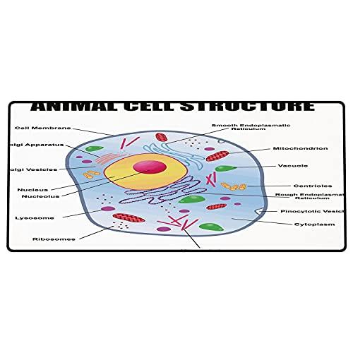 Tappetino per mouse da gioco Tema educativo, microbiologico Struttura delle cellule animali Ricerca genetica Scuola di studio Sci Superficie liscia, base in gomma antiscivolo800x400x3mm