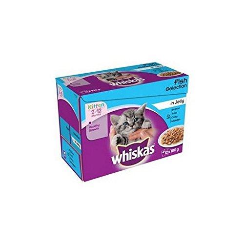 Whiskas 2-12 meses, bolsas de comida para gatito, selección de pescado en gelatina, 12 x 100 g (1,2 kg) (paquete de 2)