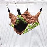 Beautymei Hamster Hamster Hamster Double Couche Chaud Double Couche Mezzanine Suspendu Squirrel Cage Hamac Cage pour Hamster Gerbillle, Souris Cochon d'Inde Écureuil 20 x 20-2 Vert1)