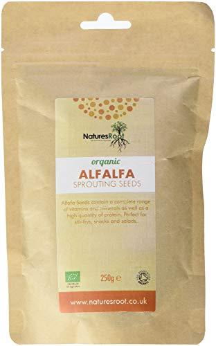 Nature's Root Semillas de Alfalfa Orgánicas 250g - Certificadas Orgánicas por The Soil Association