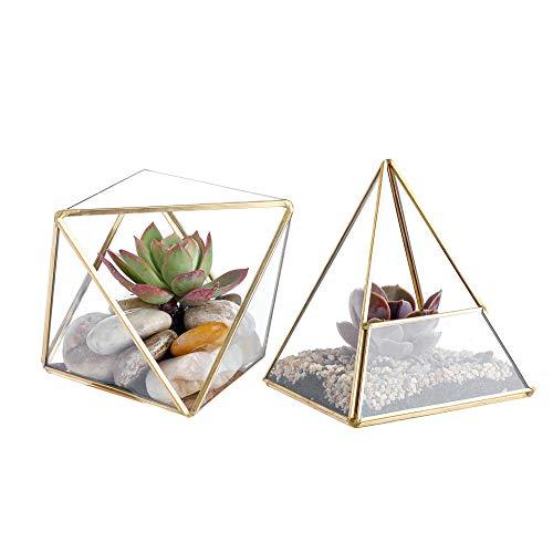 Whole Housewares Glass Geometric Terrarium Container 4.5X5.2 inch and 4.3X3.7 inch Glass Terrarium for Succulent & Air Plant (Gold, 2pcs)