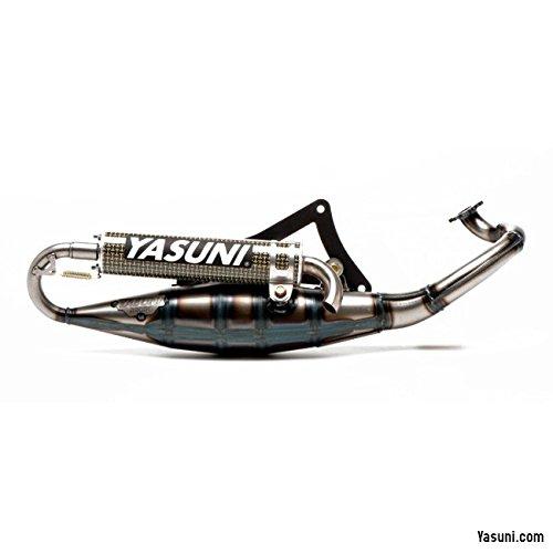 Auspuffanlage Yasuni Scooter R für Derbi Motor /, Aramid Endschalldämpfer, mit Abe E-Gutachten Peugeot, Jetforce C-Tech, Ludix, Speedfight 3 LC 50