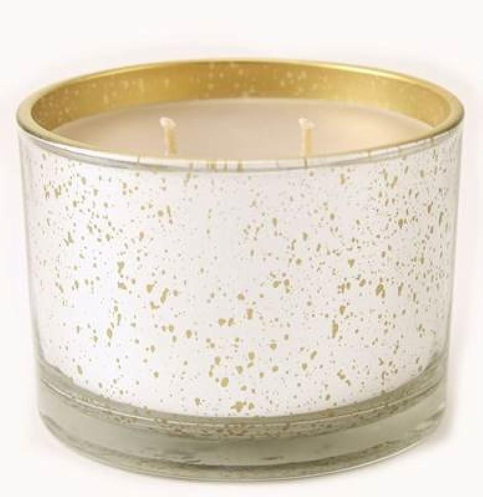 政府リファイン刈る暖かいSugar Cookie Tyler Statureプラチナにゴールド16oz香りつきJar Candle