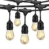 LED Outdoor String Lights 48FT with 2W Dimmable Edison Vintage Bulbs and Commercial Grade Patio Lights - UL Listed Weatherproof Strand 15 Hanging Sockets for Porch Bistro Garden Backyard