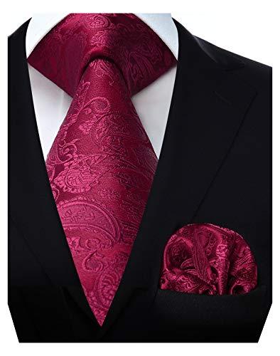 HISDERN Set da uomo classico con cravatta rossa bordeaux fazzoletto da sposa e cravatta quadrata