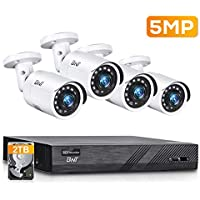 BNT 8-Channel 4-Camera 2TB NVR Security System with 2TB HDD for 24/7 Camera Recording