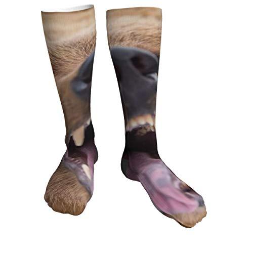 Compression Socks Women & Men Bear-Pepper-Spray Heel Thick Socks - Best for Running,Athletic Sports,Flight Travel, Pregnancy, Soccer