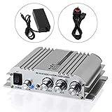 eSynic Mini Hi-Fi 2.1 Audio Power Digital Stereo Amplifier Amp - Aluminum Alloy