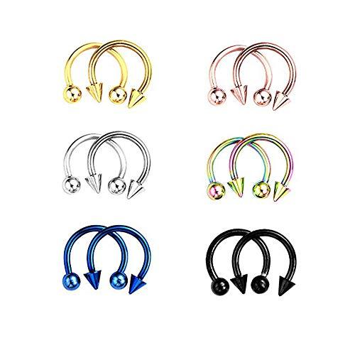 12 Pièces Acier Chirurgical Piercing Nez Anneaux Piercing Septum Horseshoe Helix Tragus Oreille Piercing Lèvre Sourcil,Bijoux piercing lèvre (6 Paires)