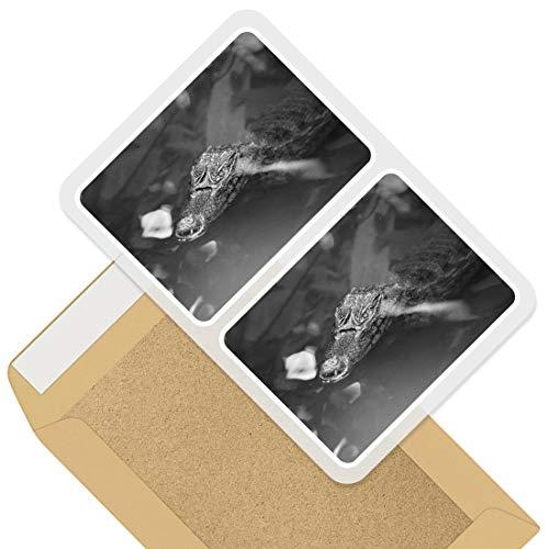 Impresionante pegatinas rectangulares (juego de 2) 10 cm – Calcomanías divertidas de cocodrilo...