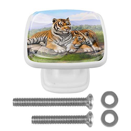 Möbelknopf Waldtiger 4er-Pack Set von Dekorative Schubladengriffe Griffe Tür für Schränke, Schubladen, Truhen usw Schubladenknopf quadratisch weiß