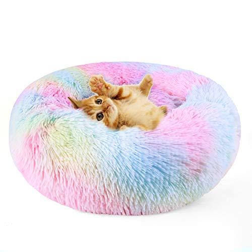 DADYPET Cuccia per Gatti, Lettini per Cani Lavabile Letto per Cani Gatto Cuccia per Animale Domestico 45/55/65/75CM Colorata- S (45 cm)