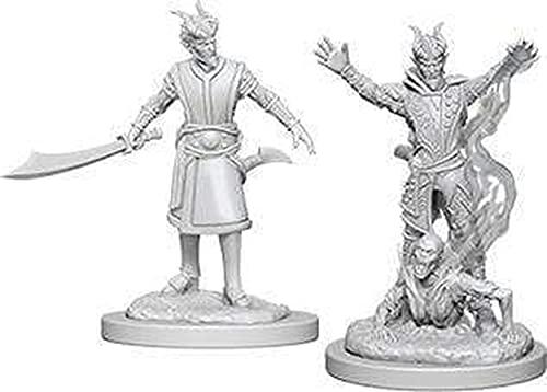 NECA D&D Nolzurs Marvelous Unpainted Miniatures: Wave 6: Tiefling Male Warlock