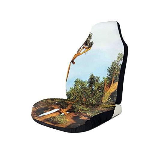 GUUi Stoelhoezen Voertuig Beschermer Auto Mat, Afrikaanse Baobab Bomen Oosterse Flora Fotografie Inheemse Planten, Fit De meeste Auto's, Sedan, Vrachtwagen, SUV 1 PCS Meerkleurig