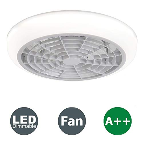 Ventilador de Techo con Luz y Control Remoto, Ventilador Silencioso Creativo Sigiloso Velocidad Del Viento Ajustable Lámpara de Techo LED Regulable (White-A)