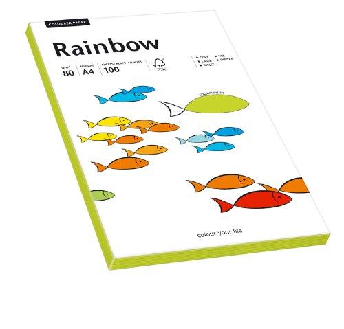Papyrus 88043183 Druckerpapier Rainbow 80 g/m², A4 100 Blatt neongrün