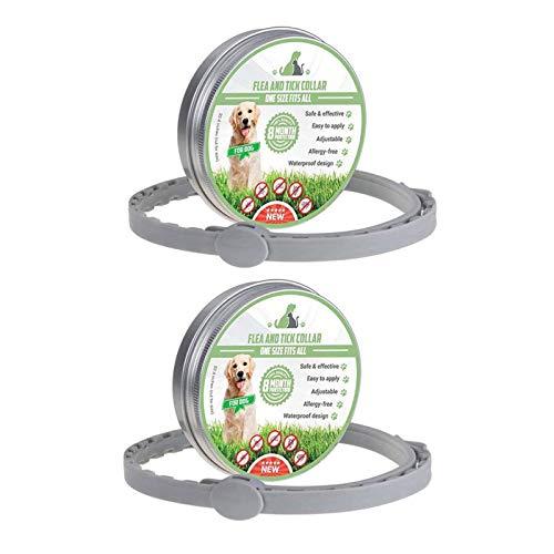 MENGZF 2PCS Collare Cani Antiparassitario Collare per pulci 8 Mesi di Protezione per Medio/Grande Cani e Cuccioli, Lunghezza Regolabilee Impermeabile, Stop morde e prurito,Collare antipulci Cane