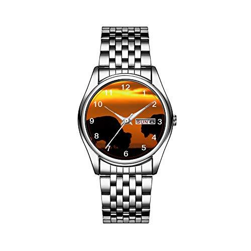 Reloj de pulsera para hombre de lujo, resistente al agua, 30 m, fecha, reloj deportivo, de cuarzo, regalo informal Bison Sunset