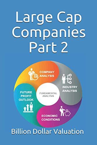 Large Cap Companies Part 2: A Complete Fundamental Analysis (Billion Dollar Valuation, Band 2020)