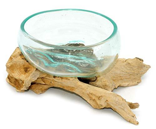 Wurzel mit Glasschale klein Schale Dekoschale Glas auf Holz Durchmesser 12-13 cm Holzdeko Teakholz Deko (Wurzel 17-20 cm)