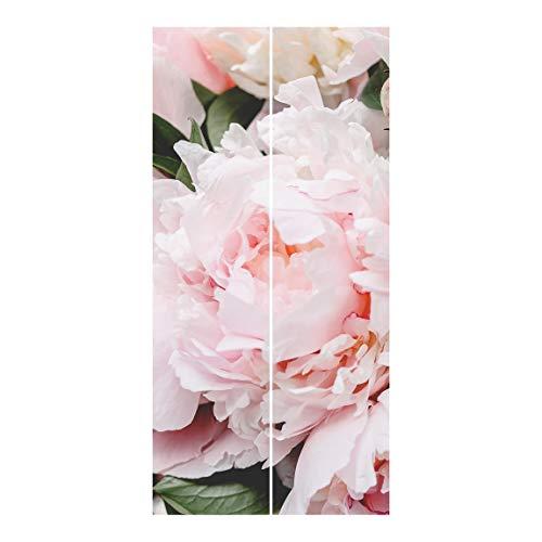 Bilderwelten Cortinas deslizables - Pink - 2 Paneles japoneses Montaje de Pared 250x120cm
