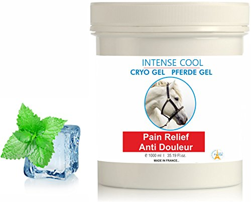 INTENSE COOL Gel Froid Cheval 1000 ml - Gel Articulations Circulatoire Effet Froid Anti Gonflement Menthe & Camphre Animaux de Compagnie
