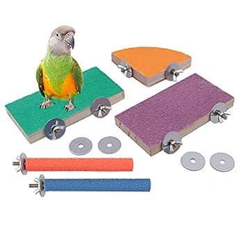 Geluode Paquet de 5 perchoirs à Oiseaux, Plate-Forme de Support de Gommage pour Cage à Oiseaux en Bois Naturel pour Perroquet Perruche Perruche