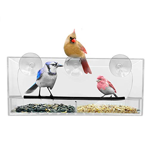 Nature's Envoy Window Bird Feeder - Strong Suction Cups for Outside - Nonslip Slide Out Seed Tray w/ Drainage Holes for Easy Clean - Clear Acrylic for Close Up View - Large Feeders for Wild Birds