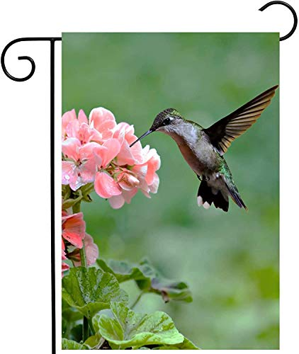 "laolang Hummingbirds Birds Tropical Spring Summer Pink Flowers Blossom Garden Yard Flag 12""x 18"" Double Sided Polyester Welcome House Flag Banners for Patio Lawn Outdoor Home Decor"