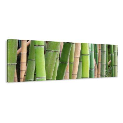120 x 40 cm Cuadro en Lienzo bambú 5705-SCT – Imagen/Impresion/Pintura Listo para Colgar