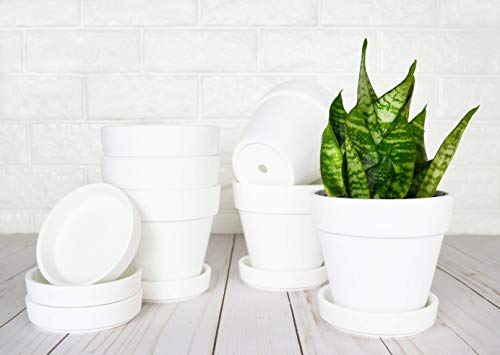 My Urban Crafts 4.7 Inch Plant Pots Indoor Set of 6 Round Ceramic Planters with Saucer Modern Decorative Garden Flower Pots with Drainage White Pots for Succulents, Snake Plants (Matte White Bisque)