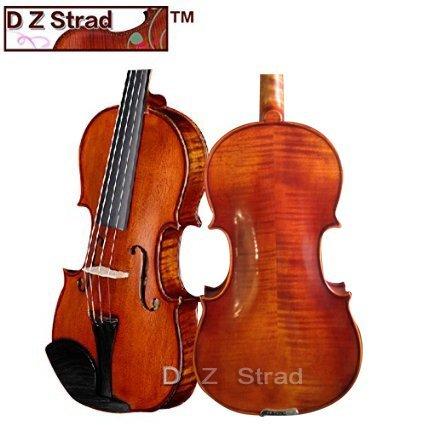 "D Z Strad Viola Model 101 with Case,Bow,Shoulder Rest, and Rosin Size: 16.5"""